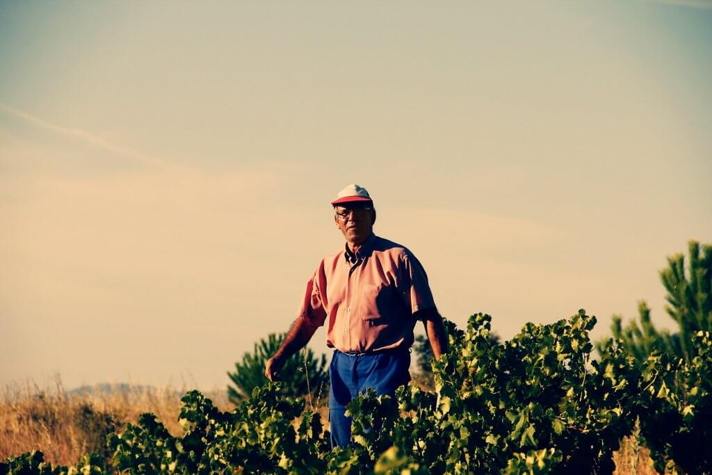 Luis Prados - Feliz - Viticultor de Cebreros
